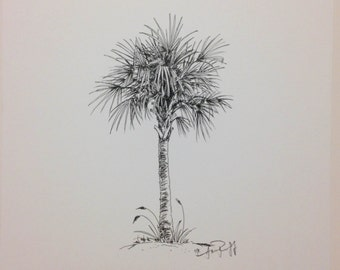 Original Palmetto Tree pen and ink - Print