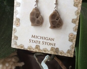 Petoskey Stone Michigan Earrings, Gift for Her, Fossil Jewelry, Gifts under 50, Earrings, Stone Jewelry, FREE SHIPPING