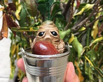 Mandrake Carnelian