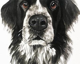 Custom Dog portrait Custom Dog Painting Custom Pet portrait Watercolor Painting Original Painting Memorial Art Custom Pug Portrait,gift idea