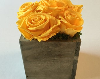 Preserved Roses in Wood Box