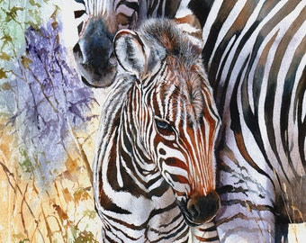 A Chip Off The Old Block tall zebra watercolour painting giclee print large Peter Williams