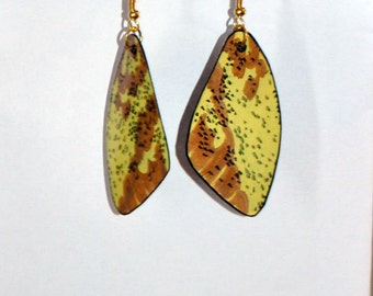 Handcrafted Moth Wing Earrings, Jewelry, 14k Gold, Hypoallergenic, Sterling Silver, Fish Hooks, Insects,  Dangled earrings, Imperial Moth