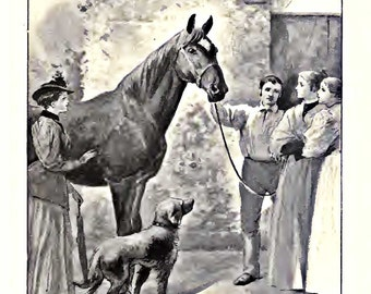 A New Home for Black Beauty - Vintage, Lithograph, Digital download