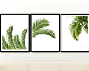 Palm leaf Print, Set of 3 Prints, Triptych, Tropical Print, Printable Art, Instant Download, Home Decor, wall Decor, Wall Art
