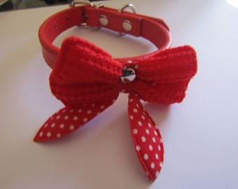 cat collar, red
