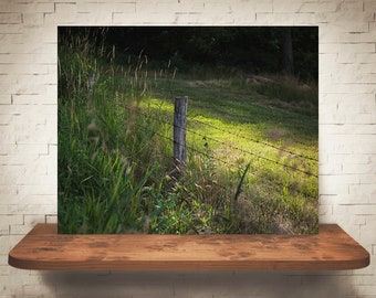 Barbed Wire Fence Photograph - Fine Art Print - Color Photography - Wall Art - Wall Decor -  Farm Pictures - Farmhouse Decor - Country
