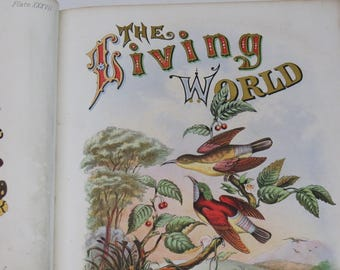 1872 The Living World Vol II - Color Illustration - Natural History - Hardcover