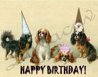 Cavalier King Charles Spanie/Unique Digital Collage/Birtthday Card/Whimsical