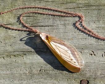 cicada wing with copper necklace, cicada jewelry, cicada wing necklace, real cicada wing, insect jewelry, preserved wing, insect wing