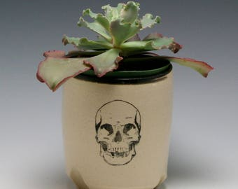 Ceramic Planter, succulent planter, orchid planter, cactus planter, White with Black Skull/ ready to ship/Ceramics and Pottery