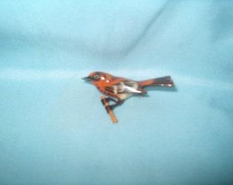 Takahashi Bird Brooch Pin, Thrush?, Wood, Hand Carved by Yoneguma  & Hand Painted by Kiyoka, Japanese, Jewelry 175.00 - 5% = 166.25