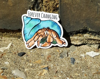Hermit crab - forever changing stickers.