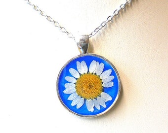 Real White Daisy Pressed Flower Round Silver Plated Pendant Necklace