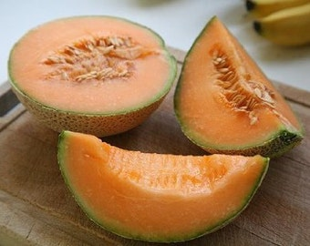 Minnesota Midget Cantaloupe Heirloom Melon Seeds Non-GMO Naturally Grown Open Pollinated Gardening
