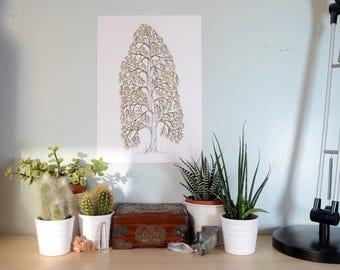 Golden Birch Tree Art Print