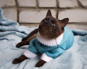 Warm blue white sweater for Cat, cat clothes, warm hand made knitted sweater, cat pullover