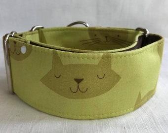 The Content Cat Martingale Dog Collar