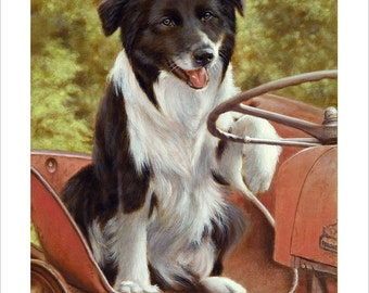 Border Collie Portrait, Down on the farm. Limited Edition Print. Personally signed and numbered by Award Winning Artist JOHN SILVER. jsfa079