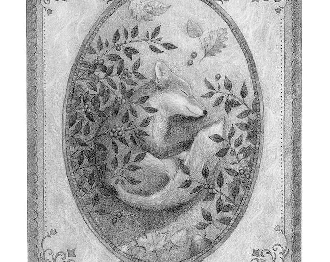 Fox Sleeping Drawing Original Art Black and White Pencil Nature
