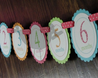 BRIGHTS Polka Dot Banner: Just Born/0-12 mos Picture Banner. First Birthday Banner. Polka Dot Photo Banner.