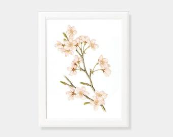 Cherry Blossom, Sakura, Flower Poster, Flowers Printable, Wall Decor, Digital Download, Printable Download, Wall Decoration, Minimalist Art.