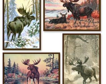 Ready made quilt blocks with vintage images of northern moose.