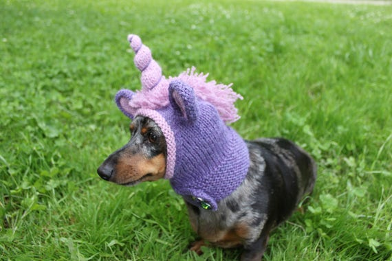 Knitting Pattern Dachshund Unicorn Hood Dog Hat Dogs Pet Pet
