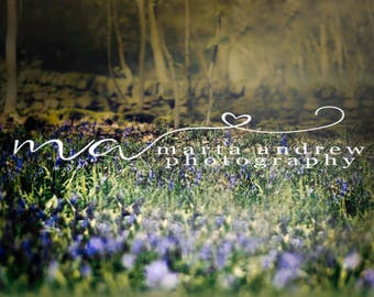 Digital background fairy forest bluebells bokeh nature flowers painterly photography portraits magical