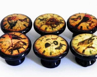 High Gloss Decoupage Knobs, Antique Clock Faces with Birds in 4 Knob Colors. Accessorize Your Kitchen Cabinet/Pantry Doors, Dressers, F