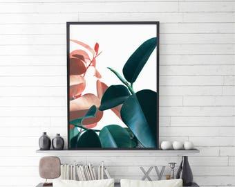 Plant Prints, Printable Wall Art, Botanical Art, Tropical Leaf, Digital Print, Instant Download, Printable Art, Leaves Print, Large size
