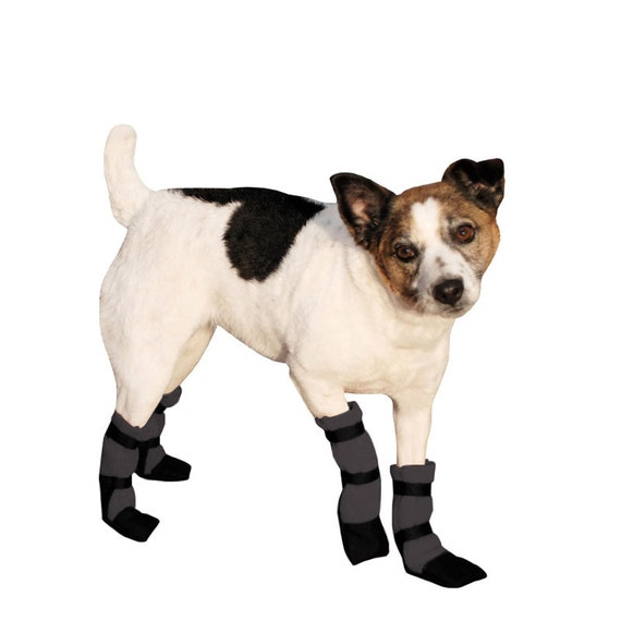 JACK RUSSELL Dog Booties Dog Boots Shoes for Dogs Dog