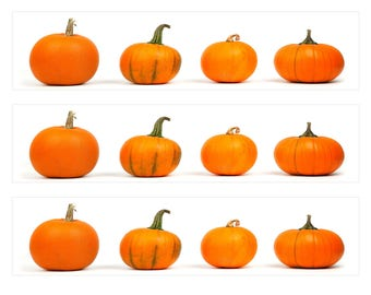 3 Strips Halloween Pumpkin Edible Images, for Round, Square or Rectangle Cakes