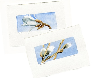 Two Original Hand Painted Floral Art Cards - Magnolia and Pussy Willows