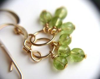 Green Peridot Earrings Gold Hoops . Healing Stone Jewelry . August Birthstone Jewelry . Green Gemstone Earring . Trio Series