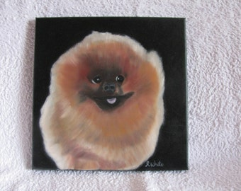 Original oil painting of a very happy Pomeranian.