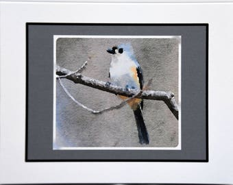 Watercolor of Titmouse Enjoying the Day - Notecards