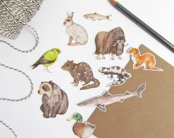 Animal stickers - sticker pack - sticker flakes - watercolour animals - wildlife illustration - stickers for children - journal stickers