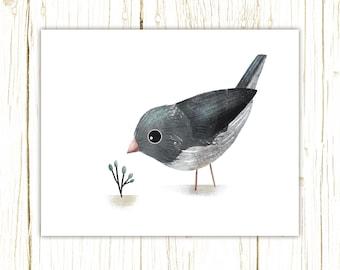 Junco Print -- bird art -- colorful bird art by stephanie fizer coleman illustration