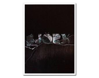 Bjork - By Andrio Abero - Art Print.  Contemporary Graphic Design Band Gig Illustration Artwork Tour Music Quality Poster High