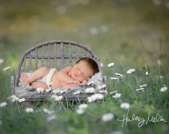 Newborn Digital Backdrop Wooden Bench Outside Instant Download!