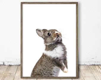 bunny print, baby bunny print, bunny art, bunny wall art, baby bunny art, baby animal print, black and white bunny, baby bunny nursery print