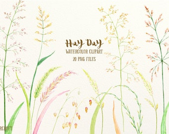 Grass clip art, hay clipart, Watercolor Clipart Hay Day, grass seed head, ornamental grass for instant download, grass clip art