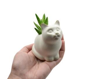 Small kitty planter - cat planter, ceramic planter - white - made in Brazil