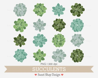 Succulent Clip Art, Plant Clip Art, Wedding Clip Art, Hens & Chicks, Instant Download