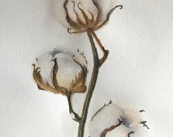 "ORIGINAL Watercolor Painting ""Cotton flower"", Floral Original Watercolor, Flowers, Fine Art, Flower Wall Art, Botanical Art"