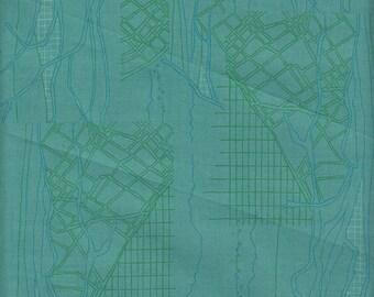 Robert Kaufman Carolyn Friedlander Friedlander Aerial in Sage - Half Yard
