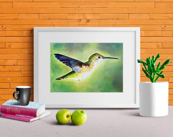 Humming Bird Watercolor Print