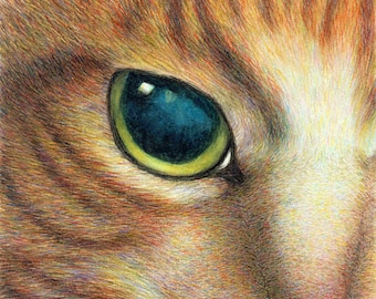 cat art print - A Ginger Cat  Face - tabby cat drawing pet portrait, cat lover's gift, painting cat print, A3 print A4