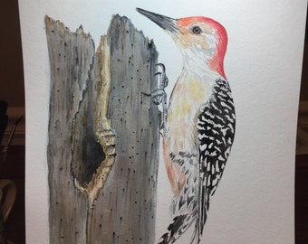 Watercolor woodpecker